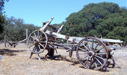 View of old wagon in field.